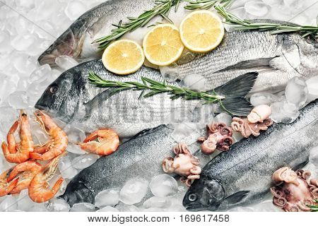 Frozen fish and seafood on ice