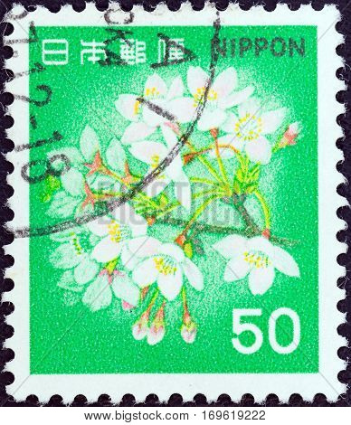 JAPAN - CIRCA 1980: A stamp printed in Japan shows flowering cherry, circa 1980.