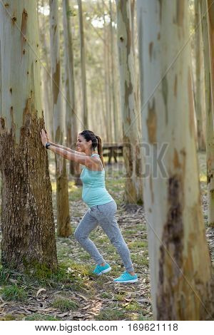 Pregnant Healthy Woman On Fitness Outdoor Workout Stretching Calf