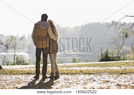 Rear view of couple looking at lake in park during autumn