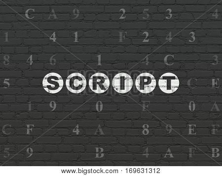 Programming concept: Painted white text Script on Black Brick wall background with Hexadecimal Code