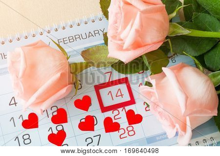 St Valentines day background - roses of light peach color and two red hearts on the calendar with framed St Valentines day date February 14. St Valentines day festive postcard