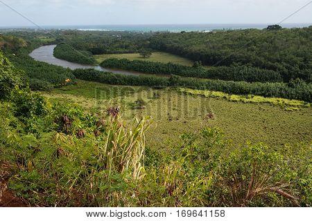 Scenic view of the Wailua River Valley in Wailua River State Park Kaua'i Hawai'i