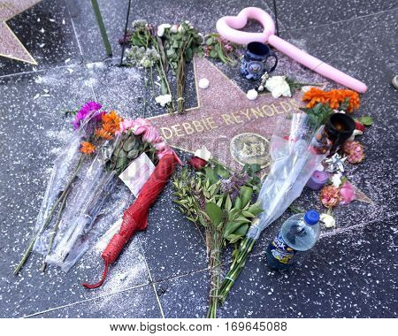 LOS ANGELES - DEC 30:  Fan tributes and official Walk of Fame memorial wreath laid on Debbie Reynolds Star on the Hollywood Walk of Fame on December 30, 2016 in Los Angeles, CA