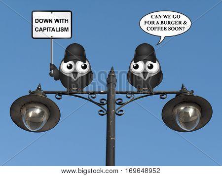 Comical contradictory anti capitalism bird protestors demonstrating