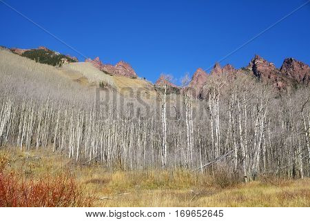Colorado Mountain Landscape In Maroon Bells Snowmass Wilderness.