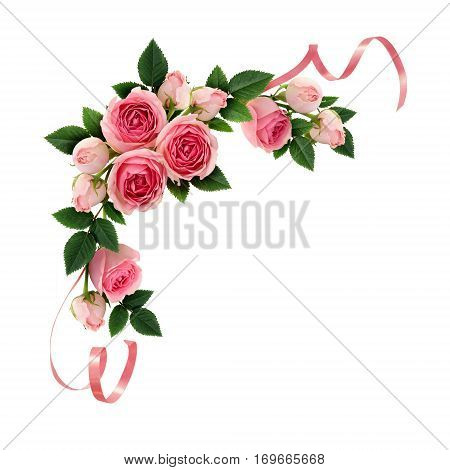 Pink rose flowers and ribbons corner arrangement isolated on white. Flat lay top view.