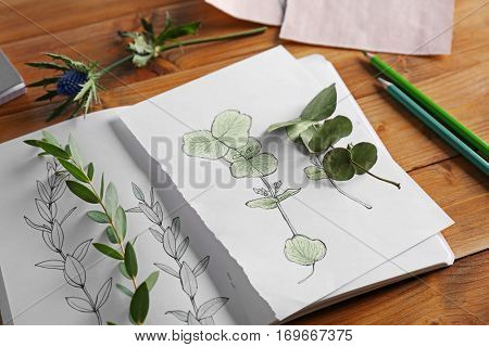 Plants and sketchbook with drawings on wooden background