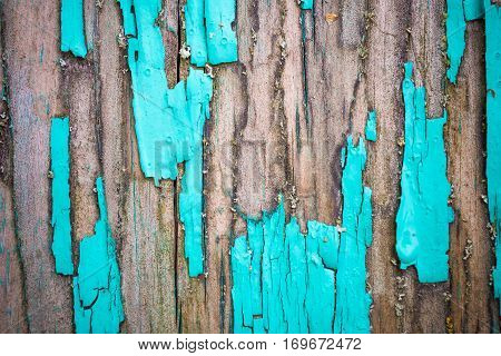 An old, weathered boards with peeling paint. Macro photo, shallow depth of field.