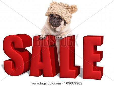 cute pug puppy dog hanging with paws on big red sale sign isolated on white background