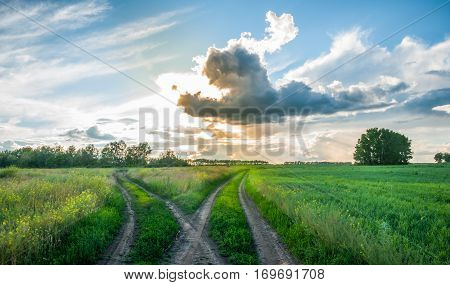 Crossroads in the field at sunset. Split country road. Beautiful clouds. Rural landscape.
