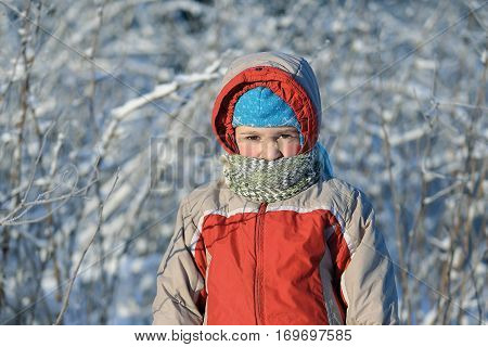 Portrait of the child walking on a frost in warm clothes with a scarf which closes a part of the face. Sunny frosty day the boy stay against the background of the bushes and trees covered with hoarfrost.