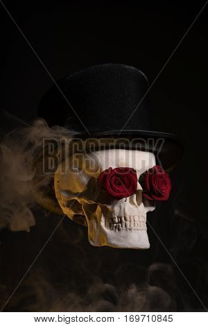 Skull in tophat with red roses in eye sockets, Halloween theme