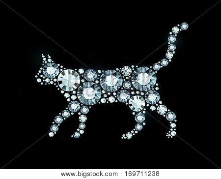 Vector Cat Made of Shiny Diamonds On Black