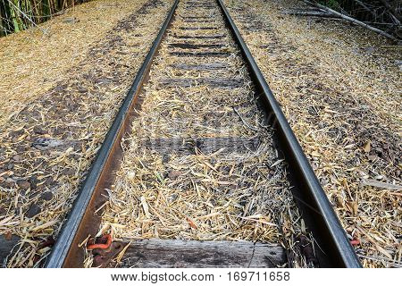 Old train track made of steel wood and stones. Path full of dried bamboo leaves.