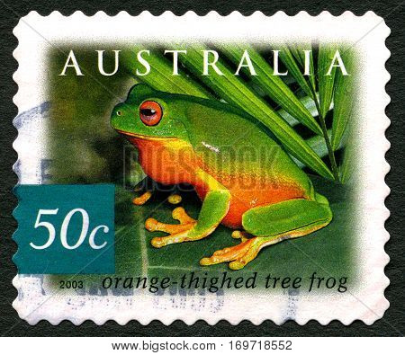 AUSTRALIA - CIRCA 2003: A used postage stamp from Australia depicting an image of an orange thighed Tree Frog circa 2003.