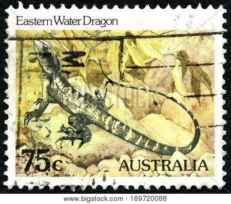 AUSTRALIA - CIRCA 1981: A used postage stamp from Australia depicting an illustration of an Eastern Water Dragon circa 1981.