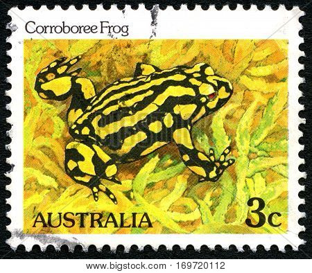 AUSTRALIA - CIRCA 1981: A used postage stamp from Australia depicting an illustration of a Corroboree Frog circa 1981.
