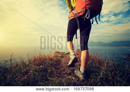 successful hiker walking on seaside mountain peak