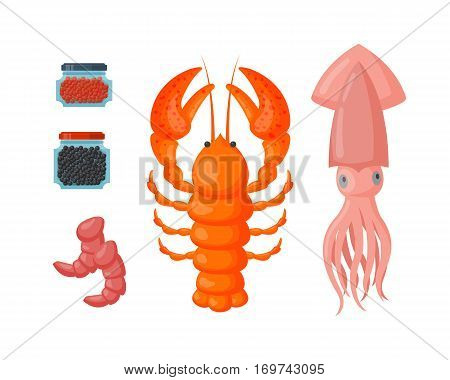 Lobster vector flat illustration isolated on white background. Fresh seafood icon claw meal. Gourmet crustacean cooked dinner marine squid delicious.