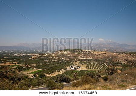 mountains and plantation