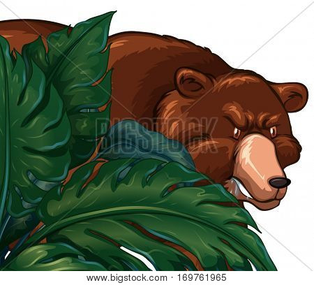 Wild grizzly bear behind the bush illustration