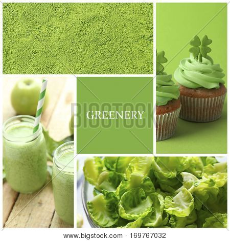 Trendy color concept. Set with greenery color