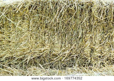 close up Texture Background of brown straw heap