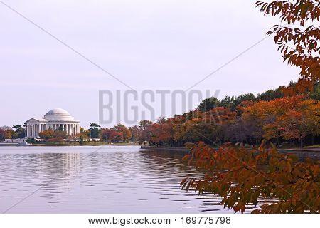 Thomas Jefferson Memorial in fall. Autumn around Tidal Basin in Washington DC near the memorial.