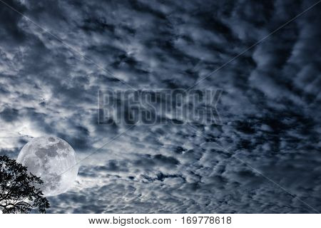 Cloudscape. Nightly Sky With Moon Behind Tree. Outdoors At Nighttime.