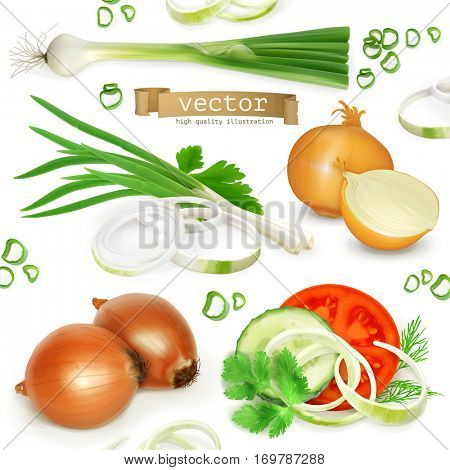 Onion set, realistic vector icons