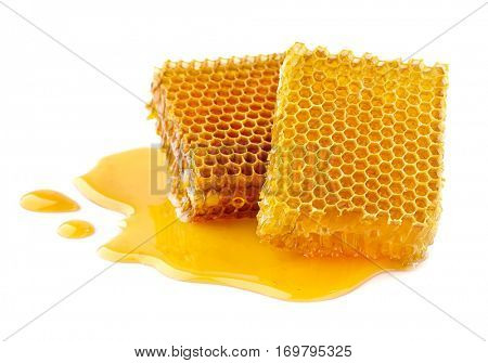Honeycombs in closeup