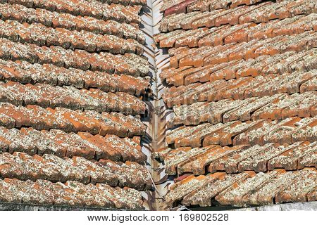 Lichen Covered Clay Roof Tiles And Rusted Valley Iron