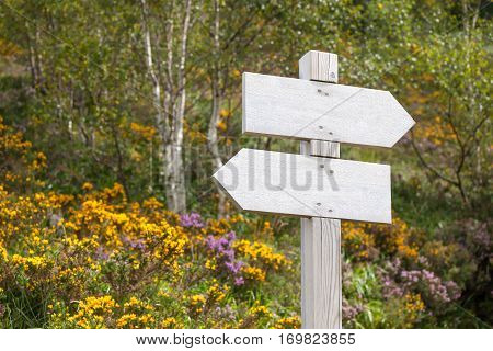 Empty signpost in summer mountains, choice of direction in life, guidepost in mountains