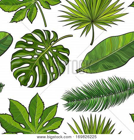 Seamless pattern of hand drawn tropical palm leaves on white background, sketch vector illustration. Hand drawn realistic tropical palm leaves as seamless pattern, background, backdrop, textile design