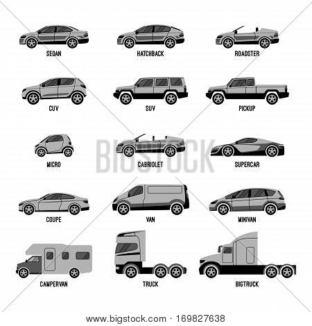 Automobile set isolated on white. Machines models of different sizes or capabilities. Typical configurations of sedan and hatchback, types of trucks and roofless car. Luxury and domestic cars vector