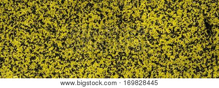 Yellow abstraction, ceramic tile, ceramic tile texture, yellow grunge