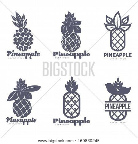 Set of black and white graphic pineapple logo templates, vector illustration isolated on white background. Stylized graphic pineapple logotype, logo design