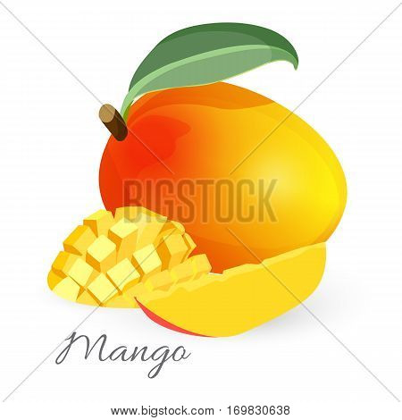 Exotic mango tropical fruit with green leaf sliced and whole realistic vector illustration. Juicy stone fruit drupe. Yummy appetizing dessert