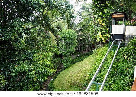 Rail Way  In Garden