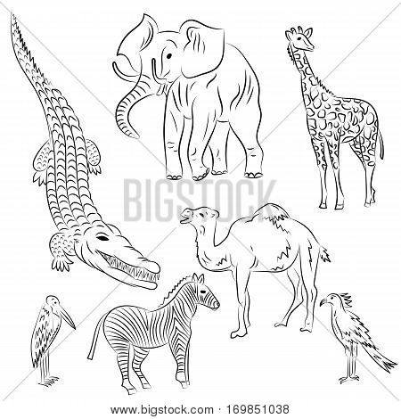 Hand Drawn African Animals and Birds. Doodle Drawings of Elephant, Zebra, Giraffe, Camel, Marabou and Secretary-bird. Sketch Style. Vector Illustration.