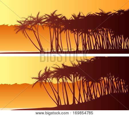 Set of horizontal wide banners of palm trees on beach at sunset.