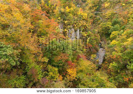 Naruko canyon in autumn season