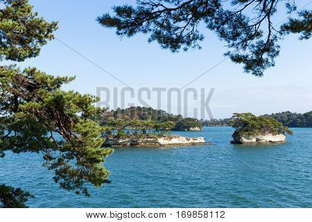Matsushima with sunny day
