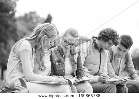 University students studying together in park