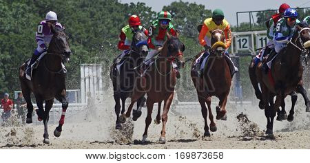 Horse racing for the traditional prize Ogranichitelni in Pyatigorsk,the largest in Russia.