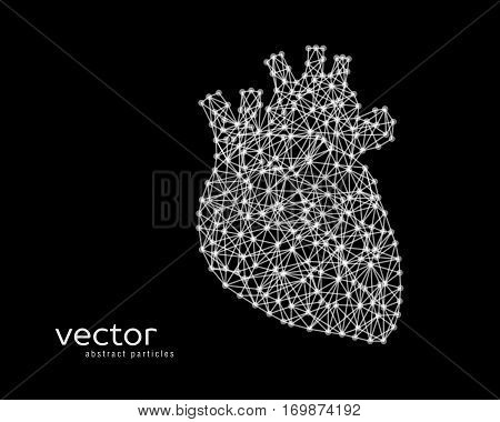 Abstract vector illustration of human heart on black background.