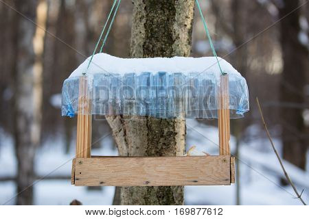 Tree house for feeding birds in winter with bread pieces.