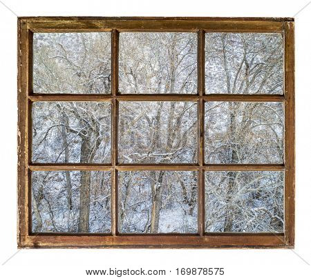 Winter scenery of trees in a canyon  as seen  through vintage, grunge, sash window with dirty glass