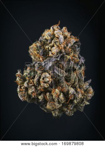 Single cannabis bud (berry noir strain) isolated on black - Medical marijuana background
